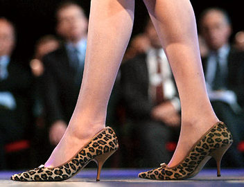 About Kitten Heels on Shoes