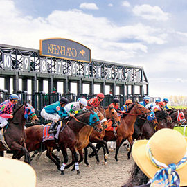 How To Locate a Horse Race Track