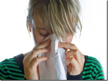 About Allergy Products That Clean the Air