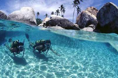Scuba Diving Vacations And Trips For You