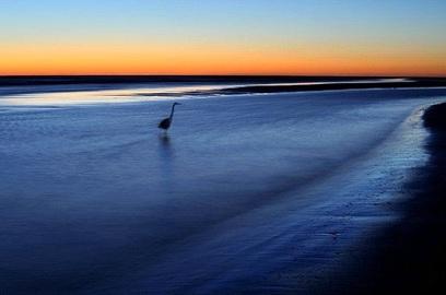 The Best Beach On the East Coast