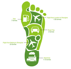 Great Advice For Footprint Carbon