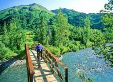 Organize Your Alaska Fishing Vacations With Family