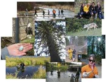 Information About Wildlife Management