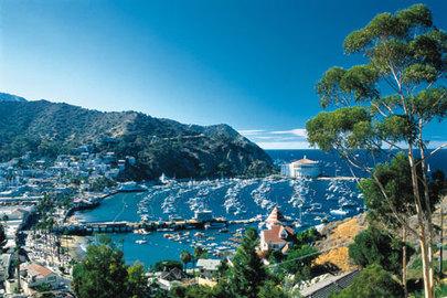 Affordable Holiday: Catalina Vacations!