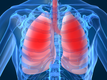 How To Prevent Pulmonary Diseases