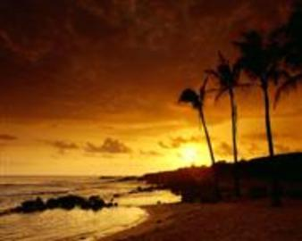 Fantastic Ideas To Get Cheap Deals On  Hawiian Vacations