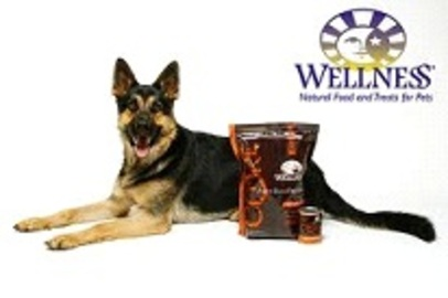 Where To Purchase Dog Wellness Food