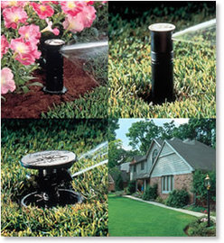 About Rainbird Sprinkler Systems