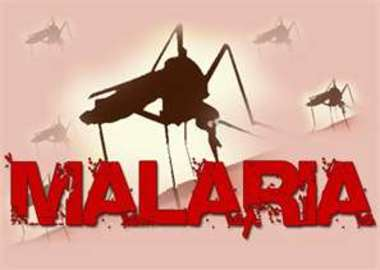 how is malaria disease cured and prevented