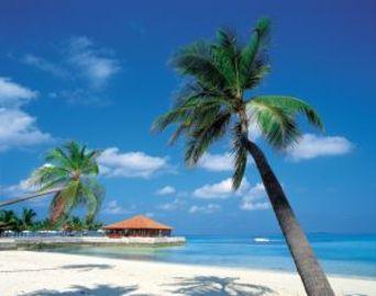 Caribbean Resorts All Inclusive - Vacations In The Bahamas