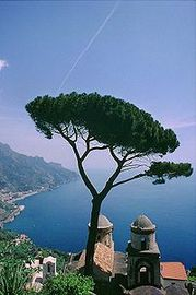 Best Location For The Perfect Vacations In Italy