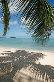 Carribean Vacations - Sun & Sand All Year Round