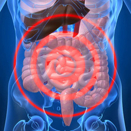5 Common Signs Of Digestive System Diseases