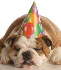 Tips To Plan Dog Birthday Parties