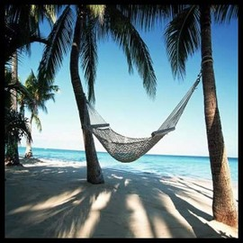 Hawaii Vacations, Tips For Saving Money on Honolulu Hotels