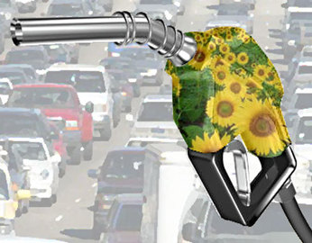 Advantages Of Alternative Transportation Fuel