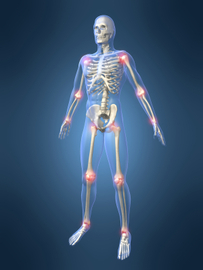 3 Diseases Of the Spinal Cord