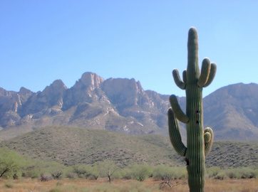 Top 5 Hotels Texas