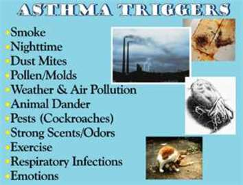 Diseases In Respiratory System