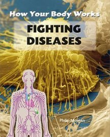 How To Go About Fighting Diseases