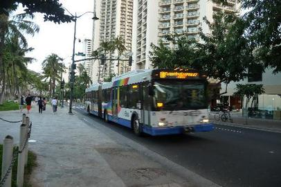 How To Find Reviews on New Bus Tours