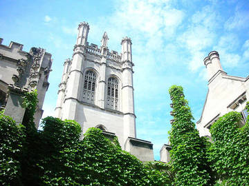 5 Most Important Courses Offered In The Illinois Universities