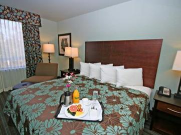 Historic Virginia Hotels